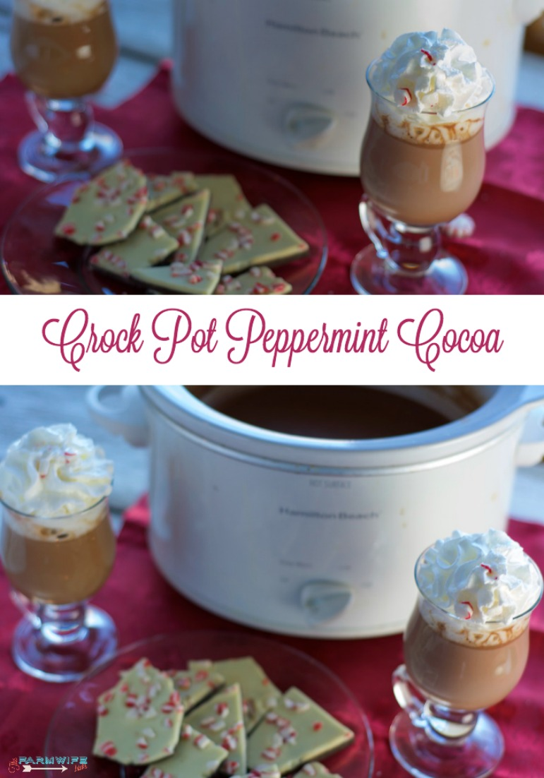 This Crock Pot Peppermint Cocoa recipe can be made with three simple ingredients and warm your chilled bones as you watch Christmas movies.