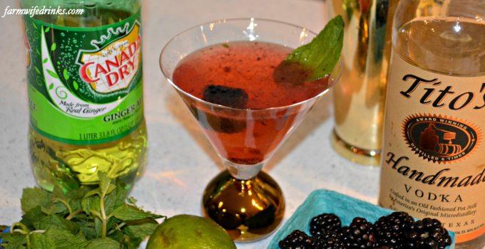 Ginger Blackberry Cocktail