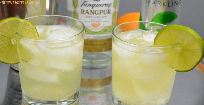 Orange-Lime Gin Fizz