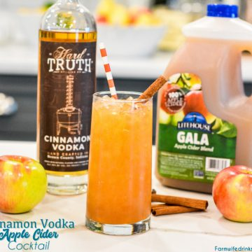 Cinnamon vodka apple cider cocktail is a simple fall cocktail for the vodka lovers out there.